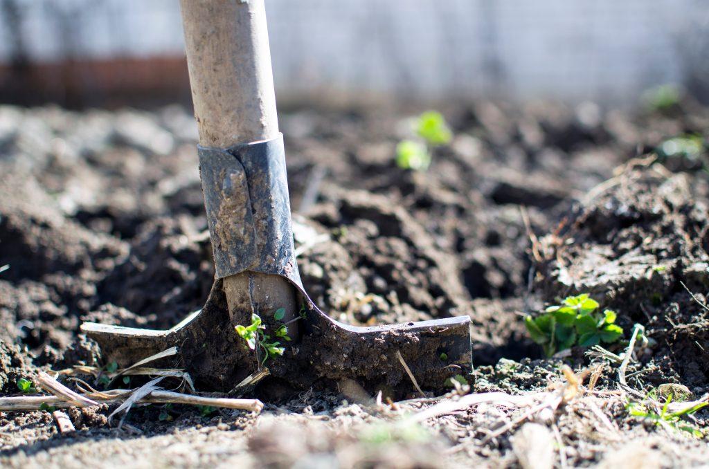 image of shovel in home garden