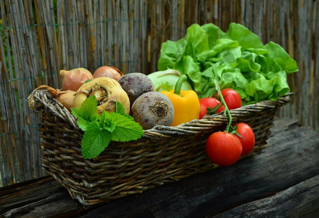basket filled with garden vegetables